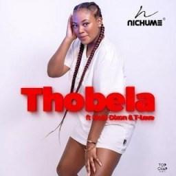 Nichume - Thobela Ft. Mobi Dixon &  T-Love